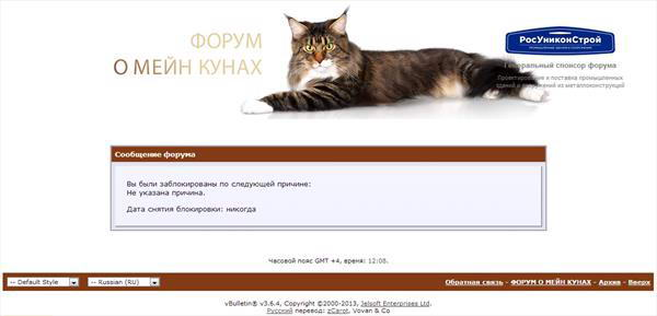 Форум о мейн-кунах заблокировал мой аккаунт навечно без объяснения причин